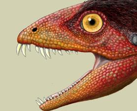 Daemonosaurus-chauliodus