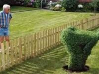 Какими должны быть соседи?