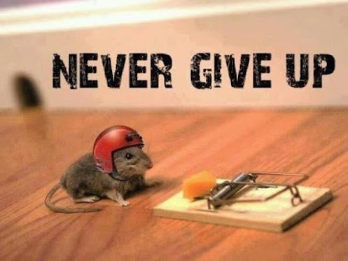 never-give-up-2
