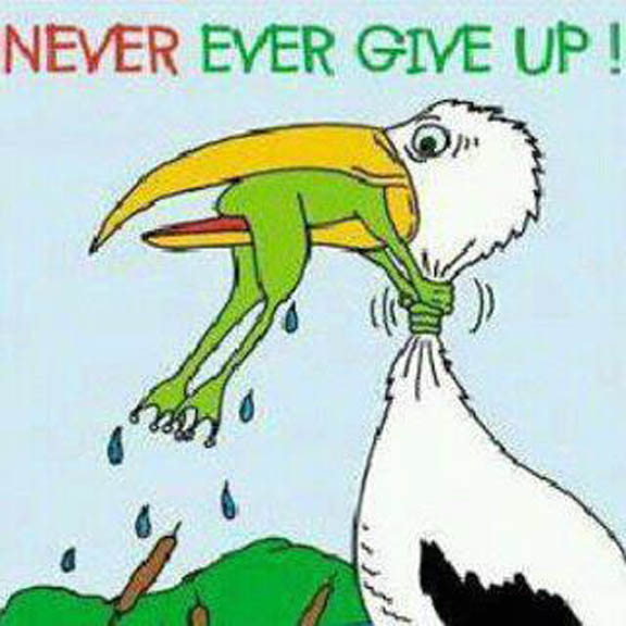 never-give-up-6
